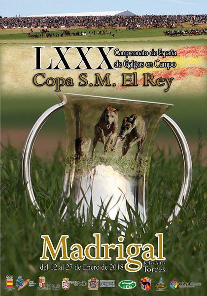 LXXX CAMPEONATO DE ESPAÑA DE GALGOS EN CAMPO COPA S. M. EL REY