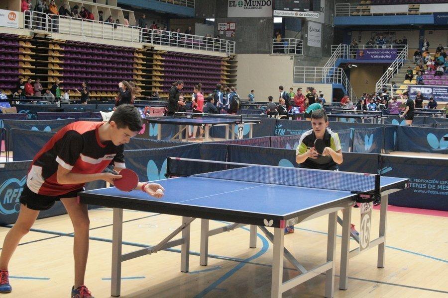 Castilla y León consigue un oro y un bronce en el Torneo Estatal de Tenis de Mesa
