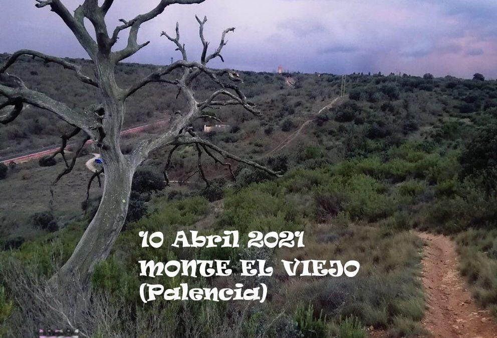 Palencia acoge el Campeonato de Castilla y León de Trail Running